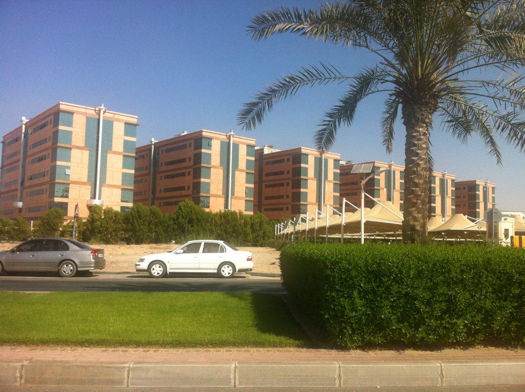 تأسيس الشركات في مدينة دبي الأكاديمية