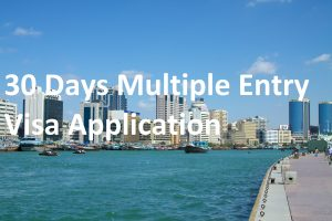 30 Days Multiple Entry Visa Application