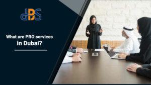What-are-PRO-services-in-Dubai