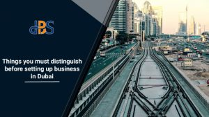Things-you-must-distinguish-before-setting-up-business-in-Dubai
