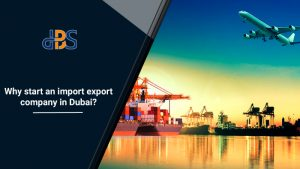 Why start import export company in Dubai 3
